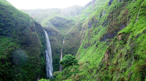 Parque Nacional Puracé.Foto archivo del parque