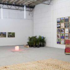 Lanzamiento virtual de 16 Salones Regionales de Artistas hace MinCultura 6