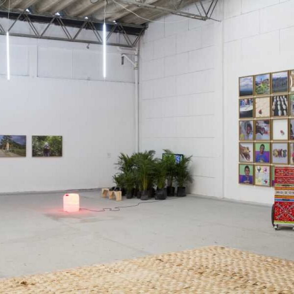 Lanzamiento virtual de 16 Salones Regionales de Artistas hace MinCultura 48