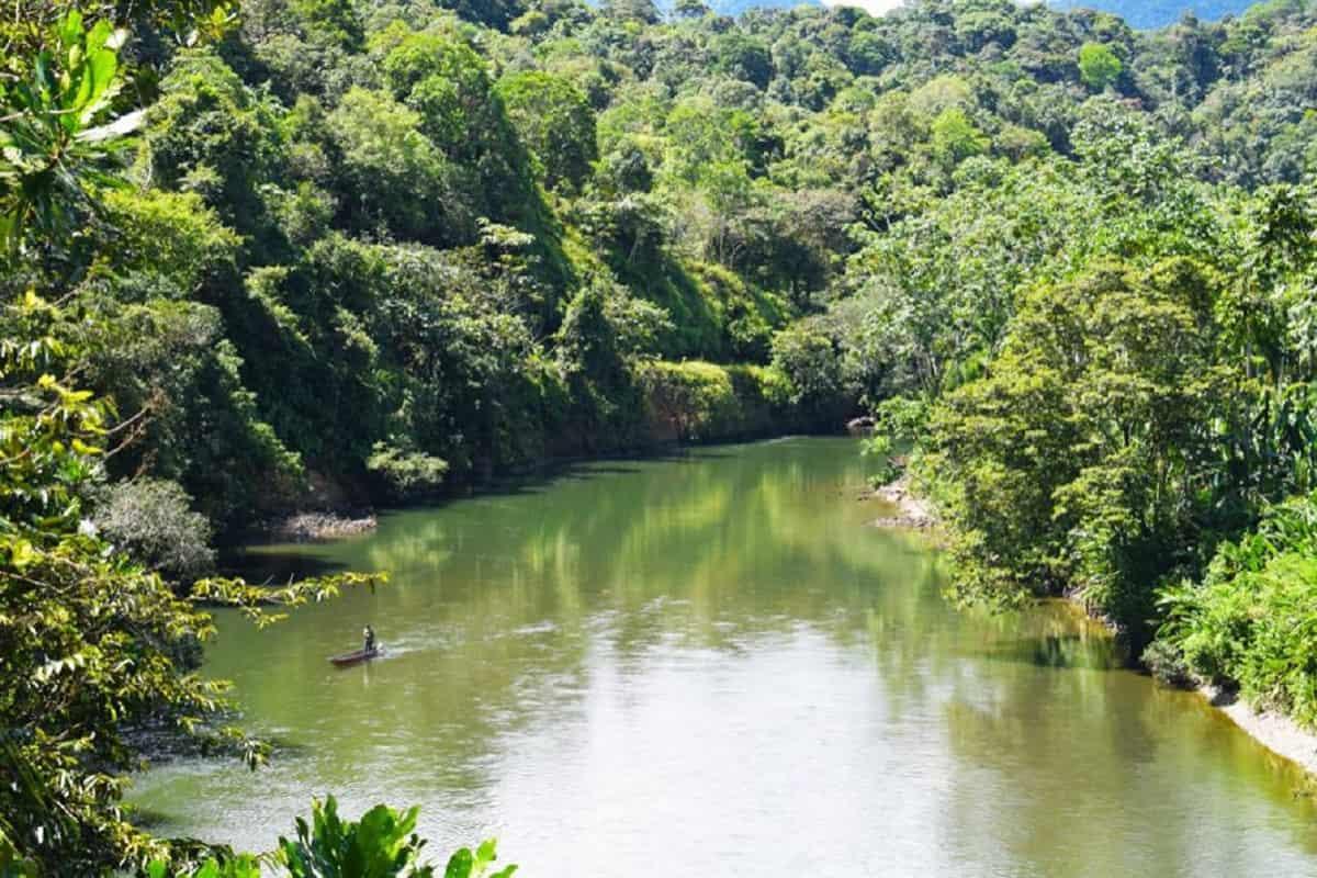 Diez Parques se reabrirán para ecoturismo en el 2021 27
