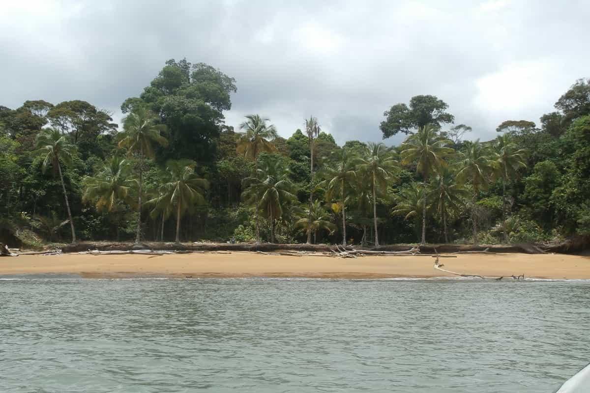 El Pacífico, un tesoro por descubrir 7