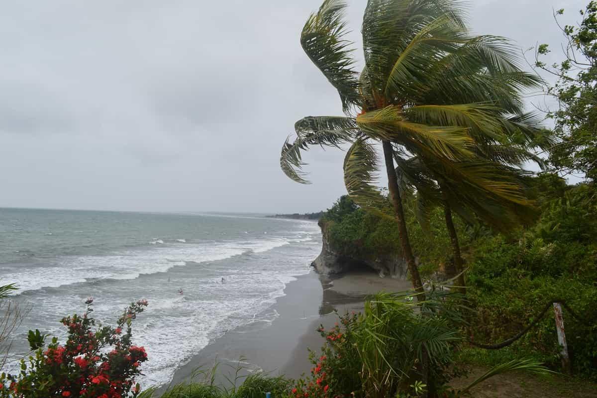 El Pacífico, un tesoro por descubrir 4