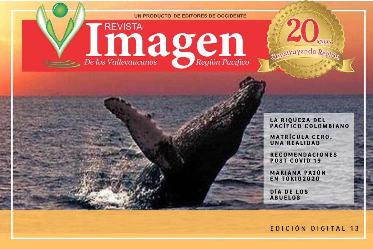 Revista Imagen Del Valle edición Digital-13