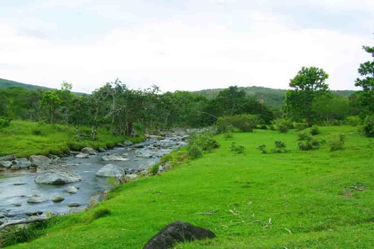 Riofrío municipio reserva ecoturística del Valle del Cauca 6