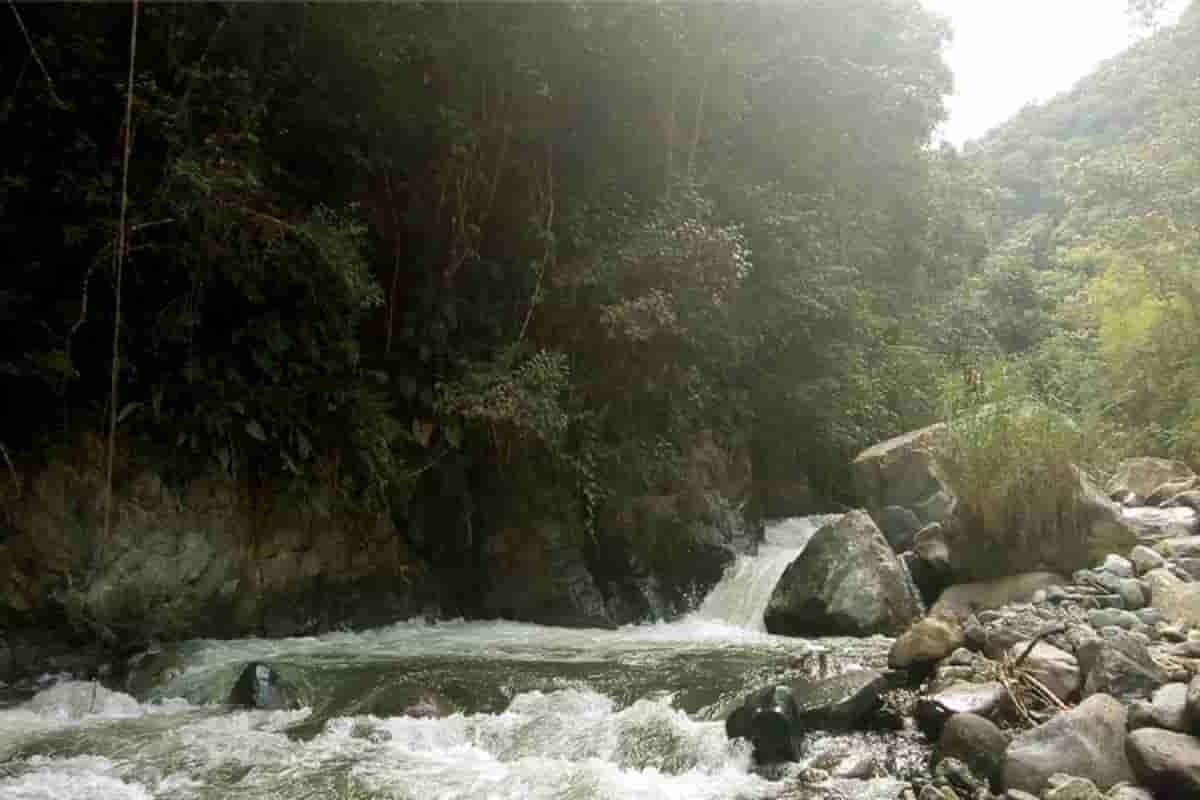 Guacarí, municipio de maestros y músicos en el Valle del Cauca 3