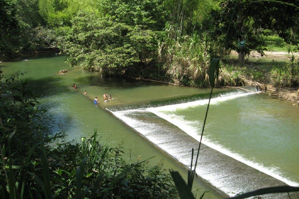 Zarzal el municipio dulce del Valle del Cauca 4