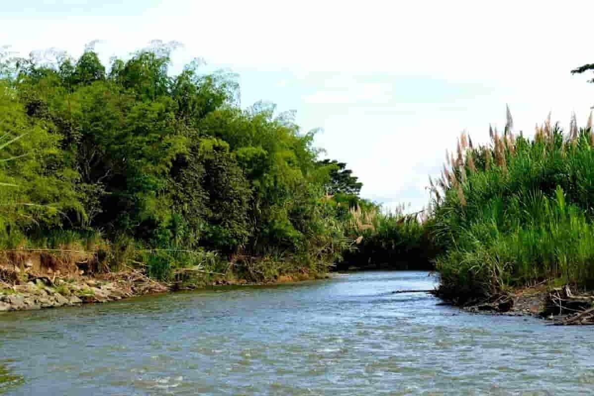 Riofrío municipio reserva ecoturística del Valle del Cauca 3